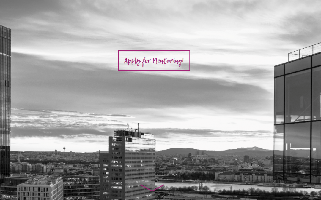 Female Founders Mentoring Programm
